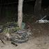 TRAGÉDIA: COLISÃO ARRANCA MOTOR DE CARRO E DEIXA DOIS MORTOS NA BR-116, NA NOITE DE SEXTA-FEIRA