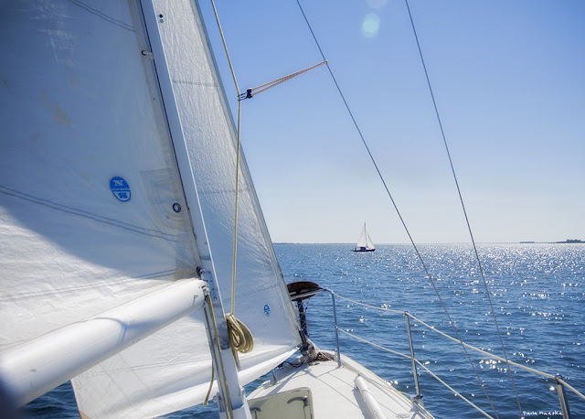 From the bow of the Mega 30 foot racer sailboat