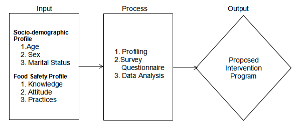 "alt=""Input-Process-Output Model in the Conceptual Framework"""