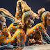 Cirque du Soleil viene en su huevo a RD