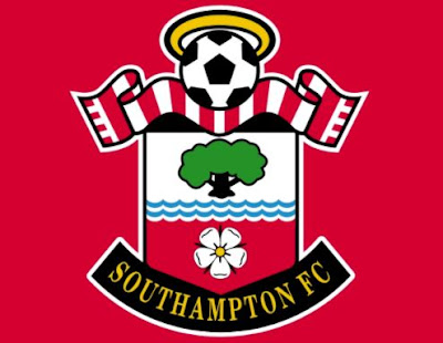 Chinese businessman Gao buys Southampton stake