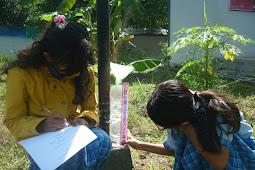 Menulis Laporan Hasil Pengamatan Curah Hujan: Pelajaran IPA Sekolah Dasar Kelas 3