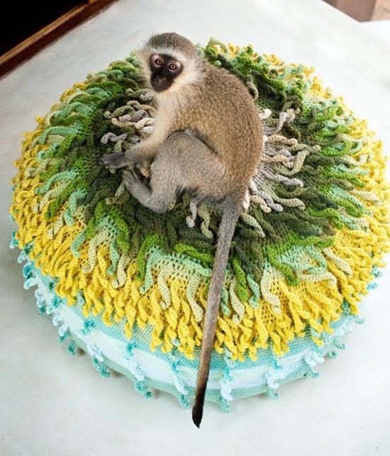 Safari Fusion blog | Monkey business | A cheeky monkey has taken a liking to this Crochet Poufe by Mayott