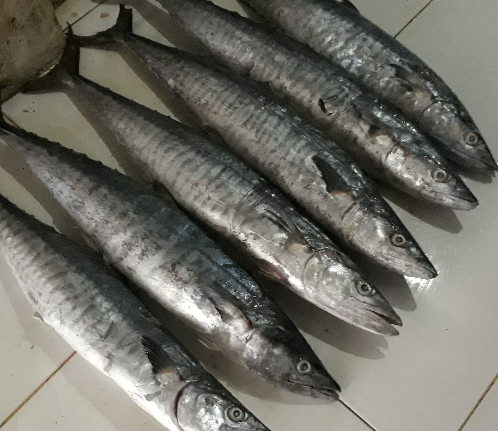 Unduh 95+ Gambar Olahan Ikan Tenggiri HD Terpopuler