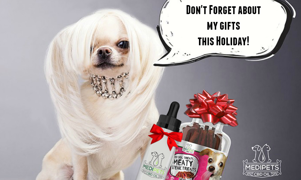 Must Have CBD Treats And Oils For Your Pets This Holiday Season From Medipets By Beauty blogger barbies Beauty Bits.jpg
