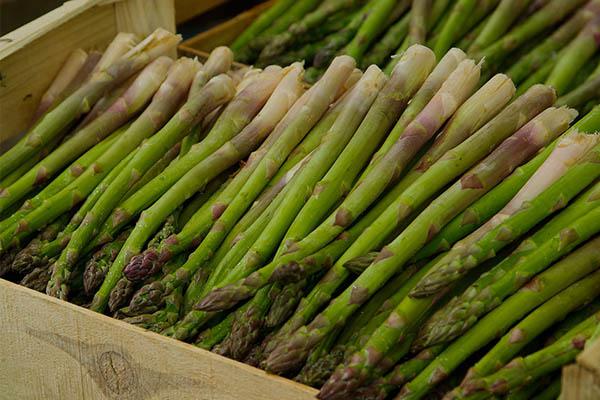 Asparagus - 9 Sayuran Yang Membantu Dalam Diet Anda Untuk Membakar Lemak Perut