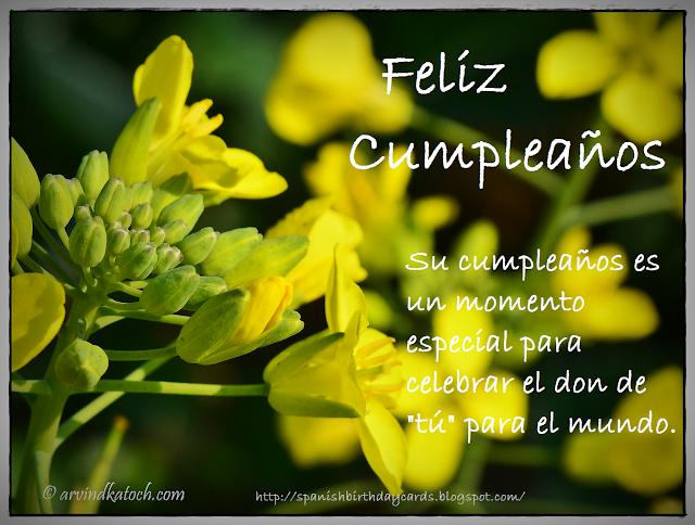 Tarjeta de cumpleaños, cumpleaños, momento, especial,celebrar,
