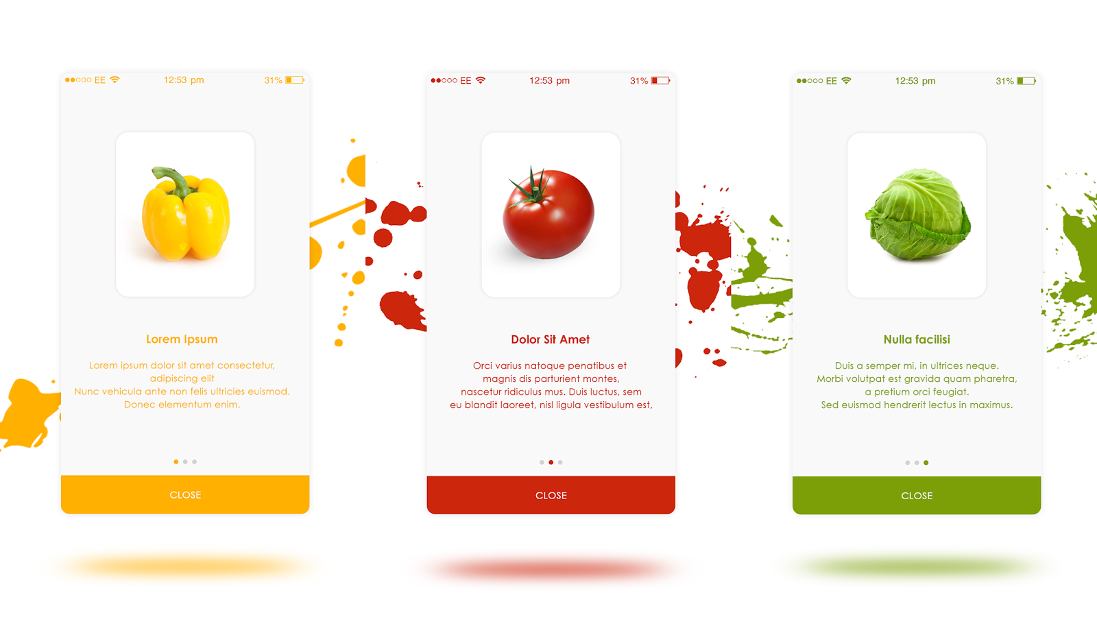 Grocery App Introduction Slides For Android And iOS App