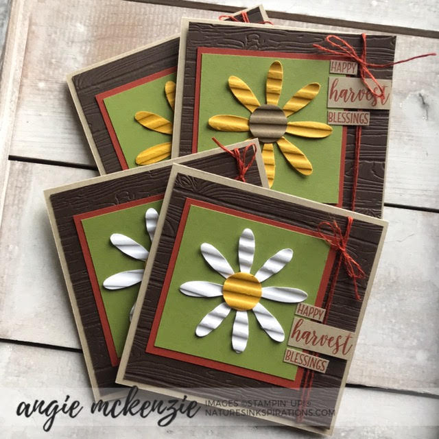 y Angie McKenzie for 3rd Thursdays Blog Hop; Click READ or VISIT to go to my blog for details! Featuring the Daisy Punch and the Country Home Stamp Set from the Stampin' Up! 2019 Annual Catalog;  #stampinup #fallinspiration  #naturesinkspirations #2019annualcatalog #countryhomestampset #daisypunch #corrugated3dembossingfolder #galvanizeddaisies