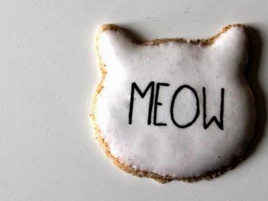 Heute gibt es Zimtkatzen - Hier Kitty, Kitty, Kitty!