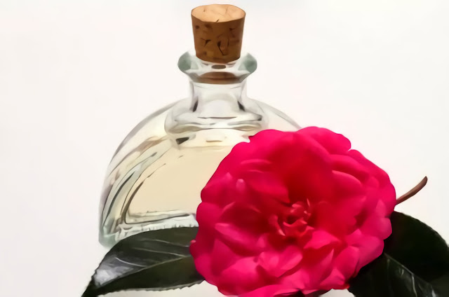bunga-camellia