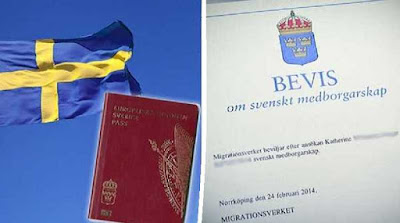 كيف تحصل على الجنسية السويدية خطوة بخطوة