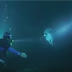 Un delfín se acerca a un buzo y le pide ayuda. Entonces sucede esto
