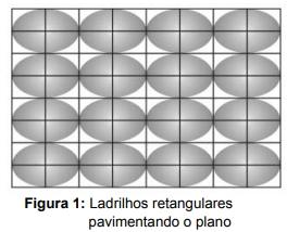 Figura 1: Ladrilhos retangulares pavimentando o plano