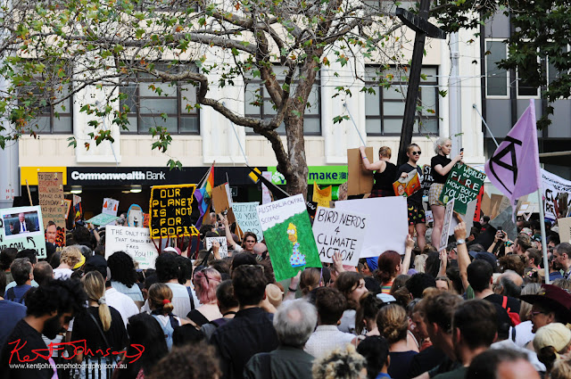 Sydney Climate Rally - A crowd of placards Town Hall Square