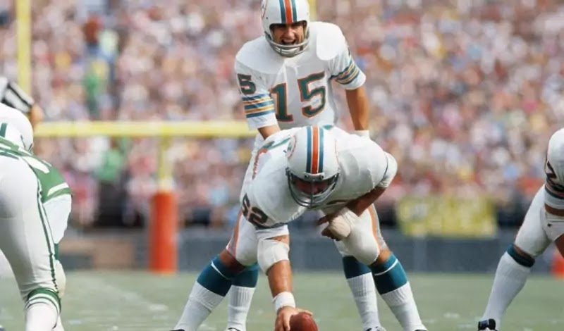 Earl Morrall led Colts to Super Bowl III and starred in the Dolphins' perfect season in 1972.