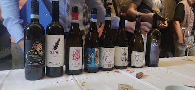 carema vini produttori