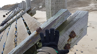 image of gloved hand in front of sea defence