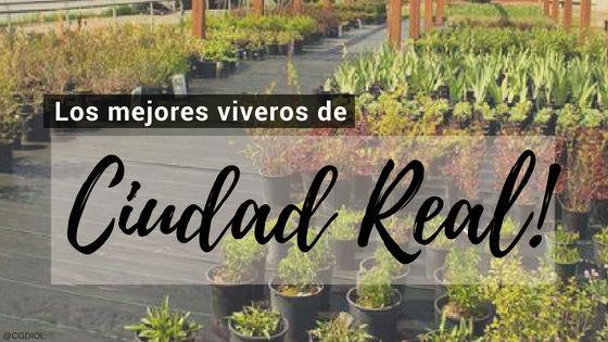 Listado de los Mejores Viveros de la Provincia de Ciudad Real, España, donde puedes comprar plantas para tus proyectos