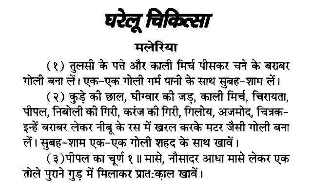 Gharelu Chikitsa Hindi PDF