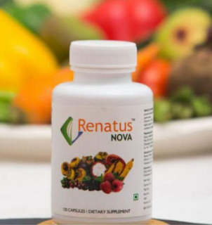 Renatus Wellness Company  Product | Renatus Nova and its  ingredients