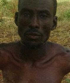 wanted boko haram arrested bauchi