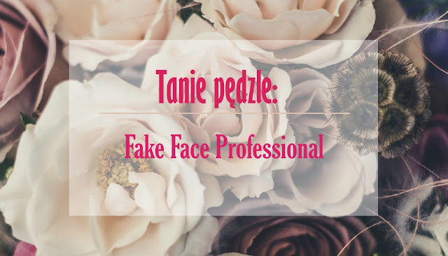 Tanie pędzle: Fake Face Professional