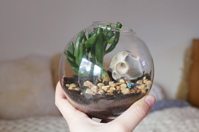 Terrarihome Review , Terrarihome Review  etsy, hanging terrarium review, Terrarihome etsy, hanging terrarium glass, terrarium mini decoration