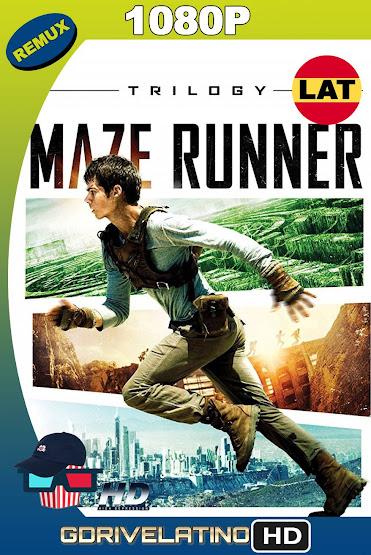 The Maze Runner (2014-2018) [Trilogía] BDRemux 1080p Latino-Ingles MKV