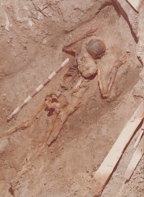 Herculaneum victim identified as Pliny's officer who died trying to help