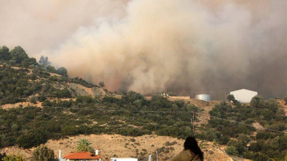 Υπό  έλεγχο η φωτιά στο Καλαμίτσι Χαλκιδικής