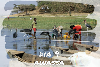 http://vipavi-etiopia.blogspot.com.es/2013/02/dia-9-awassa.html