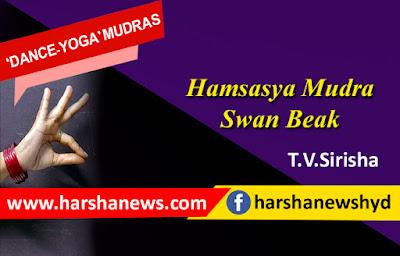 HAMSASYA MUDRA-SWAN BEAK_harshanews.com