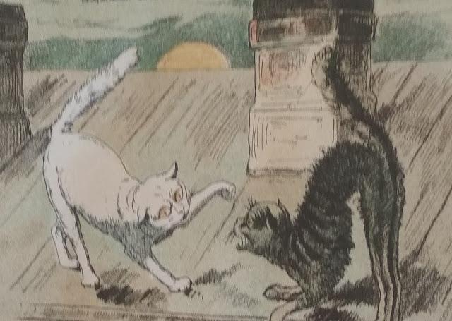 анекдоты про котиков