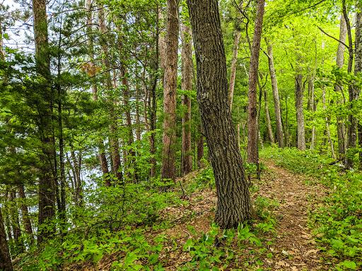 Ice Age Trail Straight Lake Segment