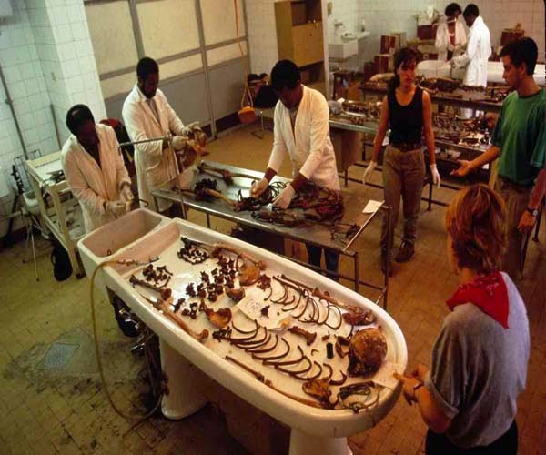 Forensic Medicine Define Forensic Medicine Aims And Branch Of Forensic Medicine