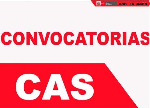 COMVOCATORIA CAS