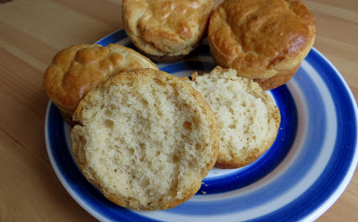Small Batch No Yeast Dinner Rolls