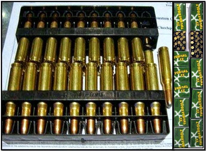 discovered ammunition