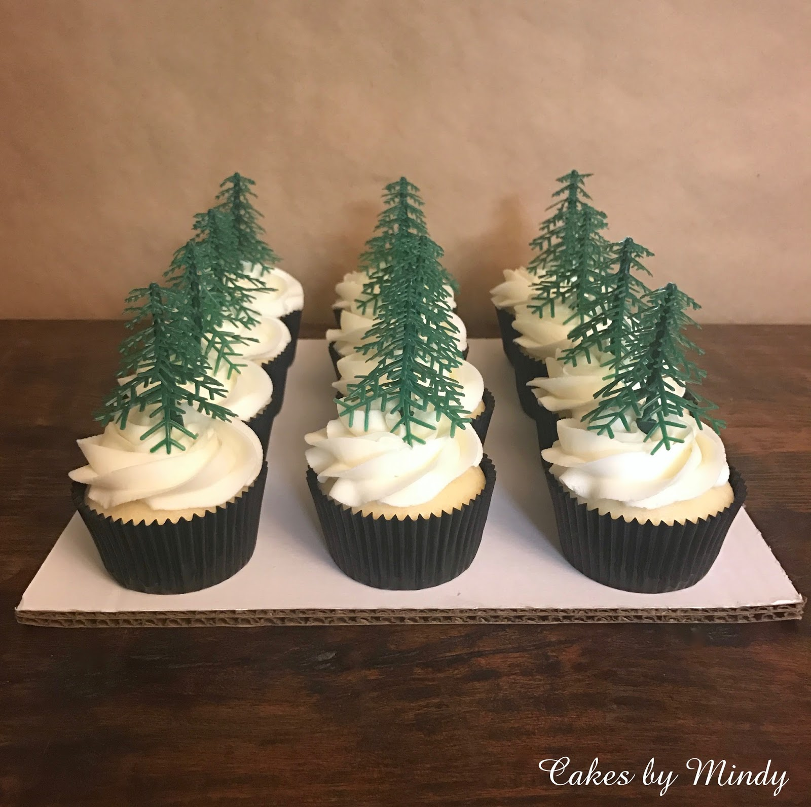 Cakes By Mindy Lumberjack Cake 6 Quot Amp 8 Quot Cupcakes And