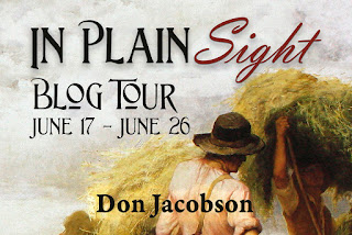 Blog tour: In Plain Sight by Don Jacobson
