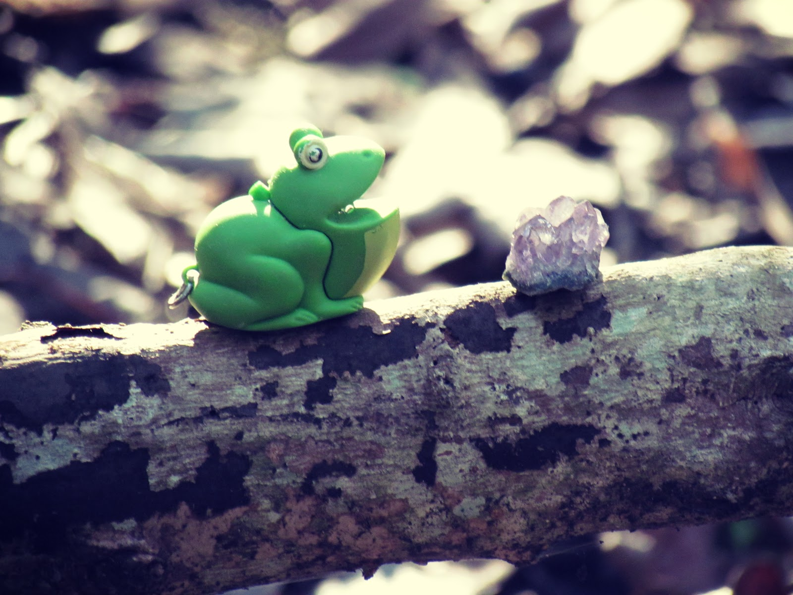 A frog sitting on a wooden log in the forest + good energy healing