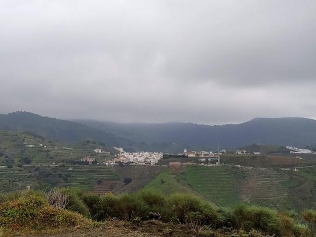 Sedella Vinos. D.O. Sierras de Málaga