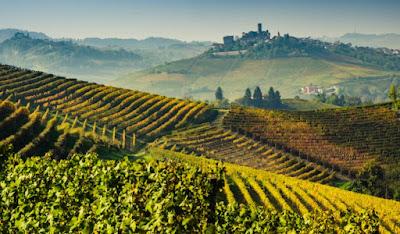 Η κλιματική αλλαγή απειλεί και το κρασί