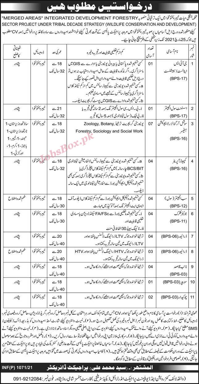 Forest Department Khyber Pakhtunkhwa Jobs 2021
