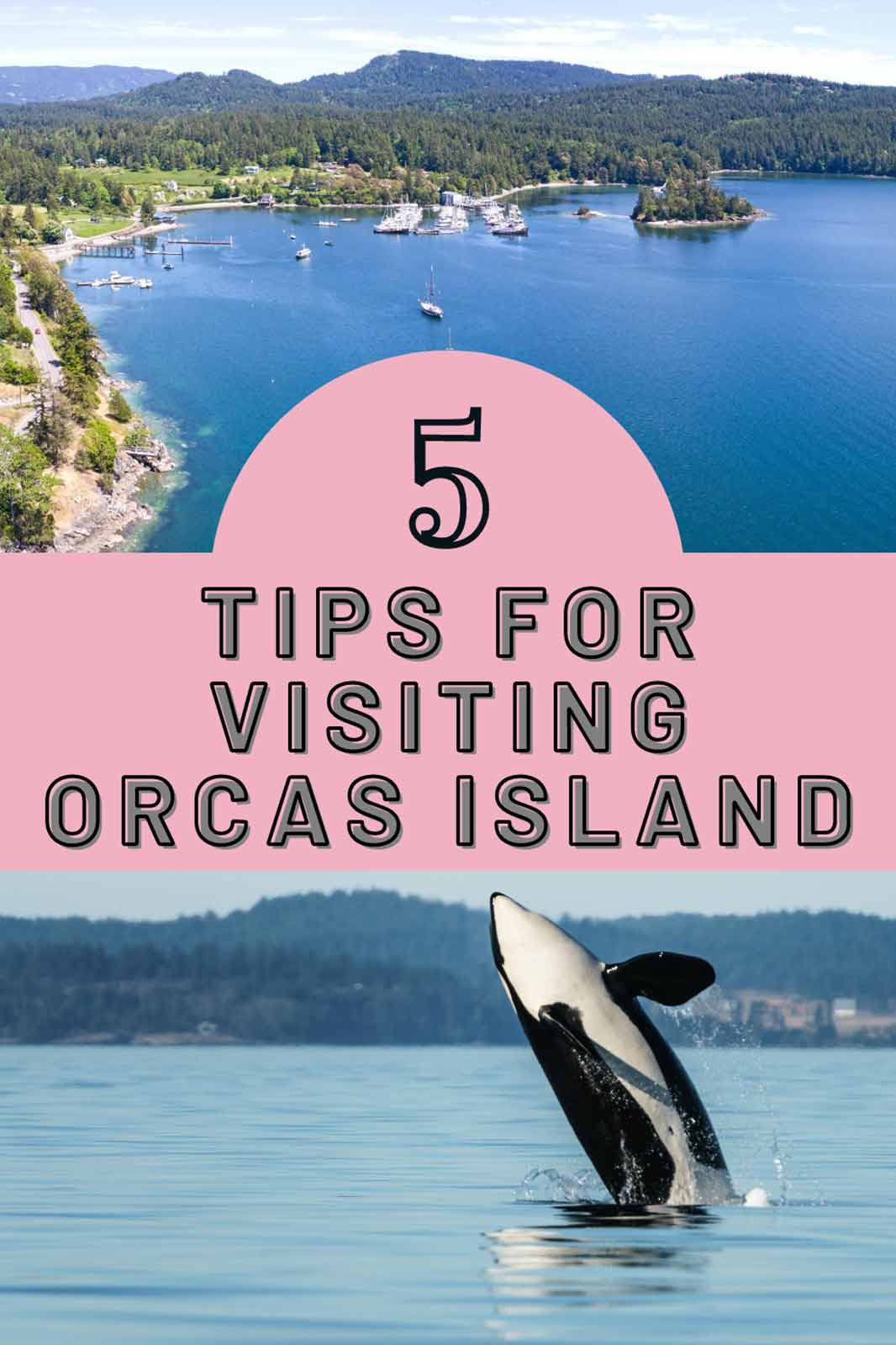 If you are ready to retreat to paradise, then read on for our 5 tips for visiting Orcas Island.