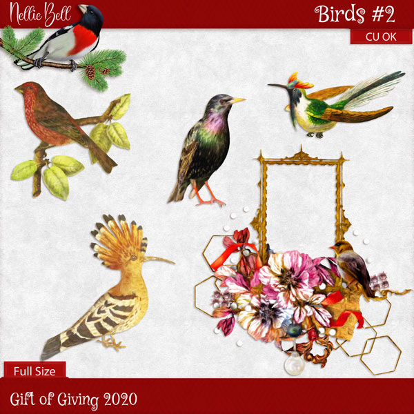 https://1.bp.blogspot.com/-vC6MsdK4auk/X-IQuBehU-I/AAAAAAAAH00/PXXDl521ocohbrkhpKOU0Td3SA7die95ACLcBGAsYHQ/w640-h640/1nb_birds2.jpg