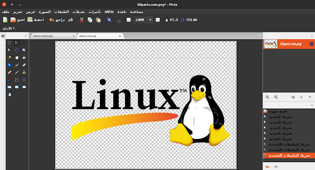 pinta for linux &windows