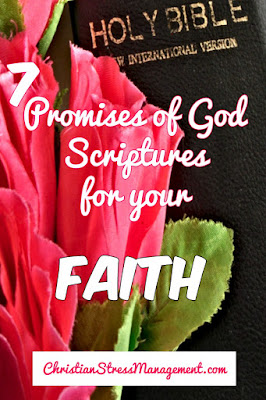 7 Promises of God Scriptures for your Faith