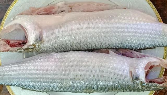 طريقة تنظيف سمك البوري الشيف محمد الدخميسي